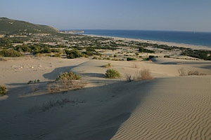 Patara is a beach town in a national park near the ancient Lycian